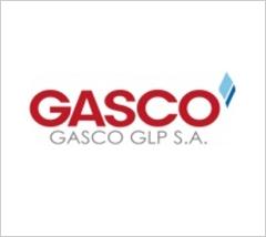 Gasco Magallanes S.A. – Ingeniería Conceptual para el Sistema de Respaldo de Gas Natural de la Ciudad de Punta Arenas
